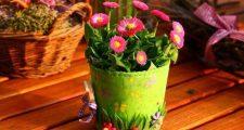 春の花壇におすすめのガーデニング植物